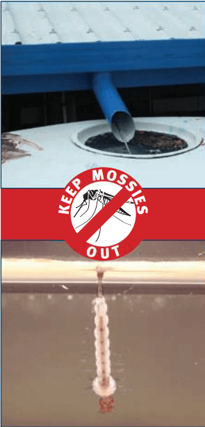Rainwater tanks – A guide to keeping your tank safe from mosquitoes