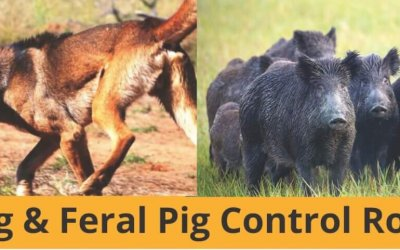 Wild Dog and Feral Pig Control Roadshow