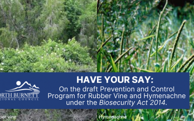 Have your say: